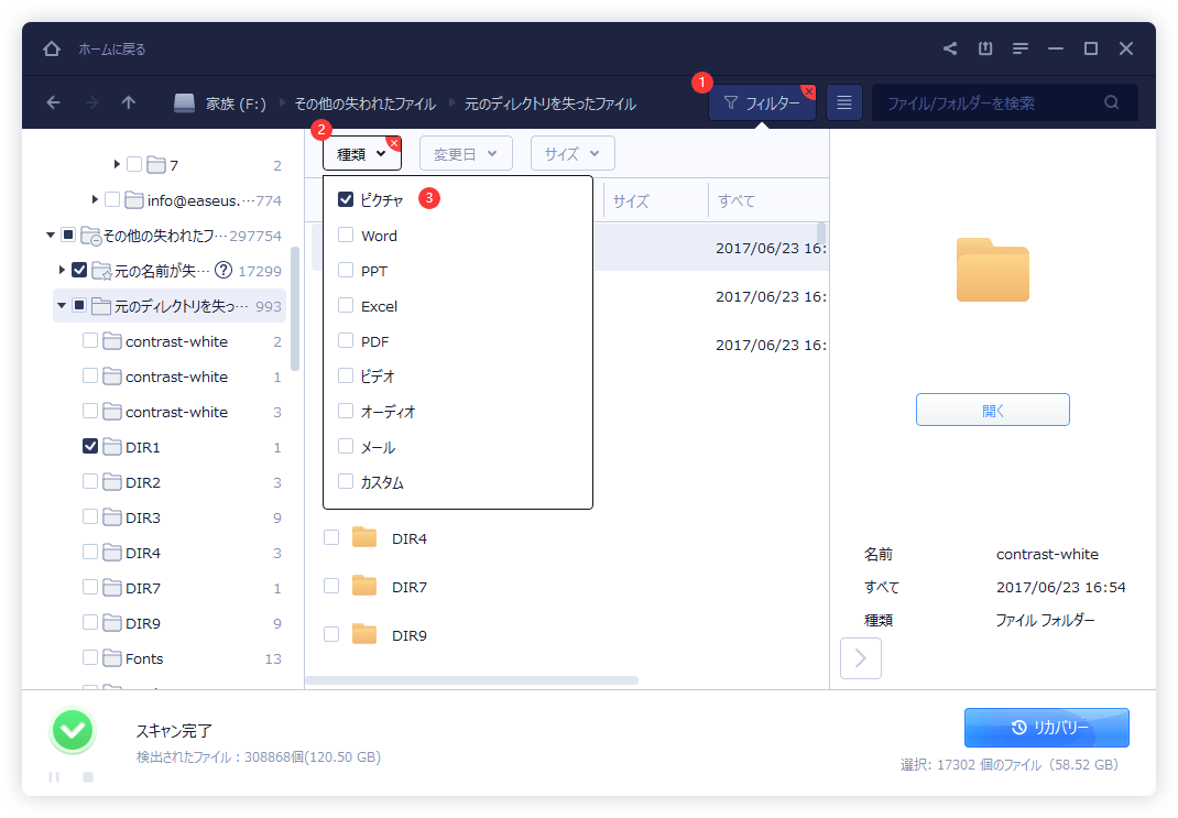 EaseUS Data Recovery WizardでフォーマットされたPicasa画像を復旧するステップ 2